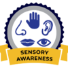 CATP_SensoryAwareness_Logo-Certified Autism Travel Professional Competency 4-1-19