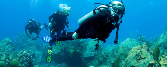 Scuba Diving and Autism Part 1: Autism and Affinity for Water