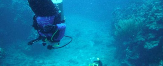 Scuba Diving and Autism Part 2: How Autism Certification Helps